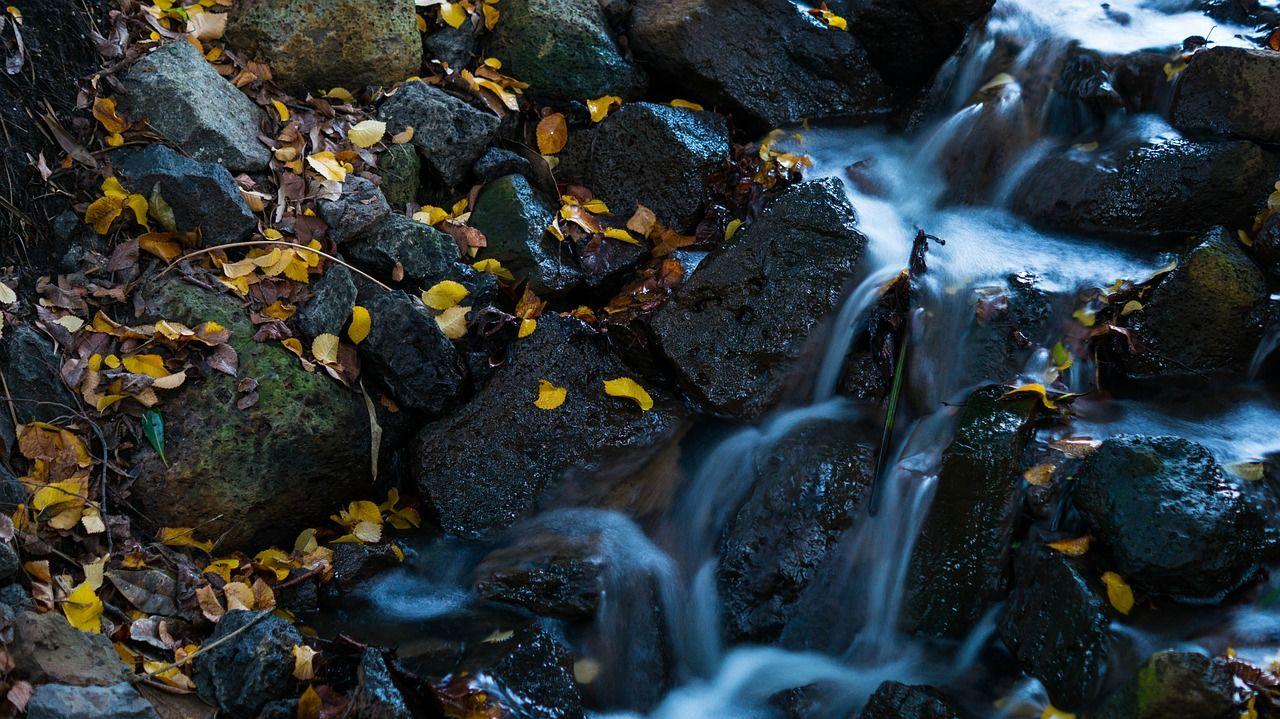 filtracia vody v prírode armytraining blog