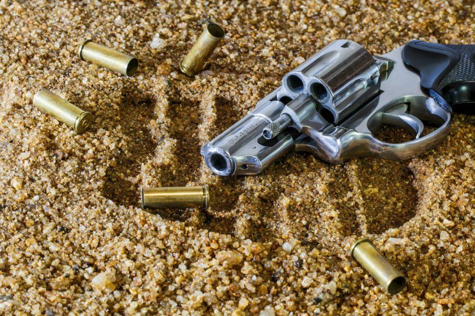 obrana strelnou zbraňou armytraining blog