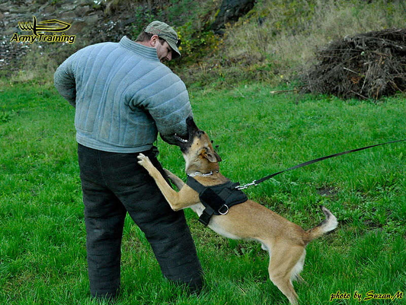 boj so psom armytraining.sk obrana proto psovi